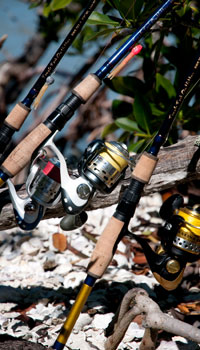 Naples fishing guide naples fishing charter for Fishing companies looking for prostaff